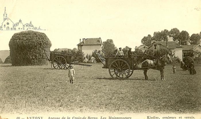 les moissons vers 1910