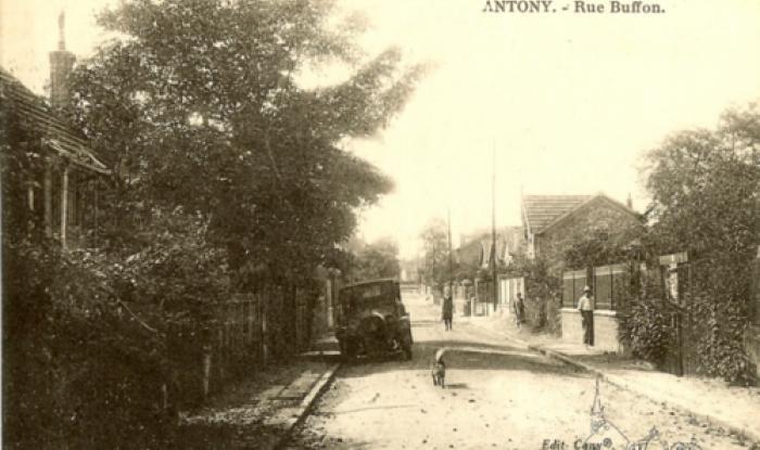 rue buffon
